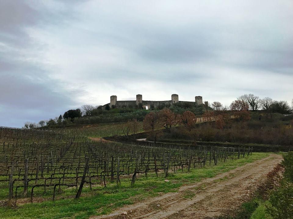 La Via Francigena in Toscana. Dalla Val d'Elsa a Siena